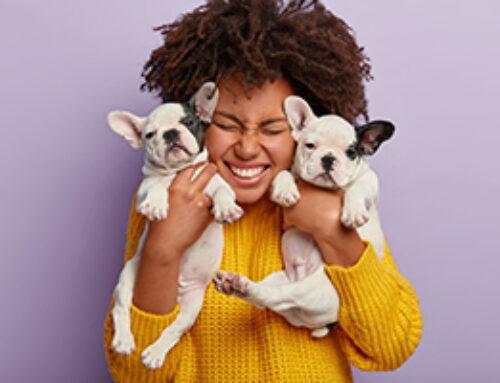 Beneficios que trae a tu vida contar con el amor de tu mascota