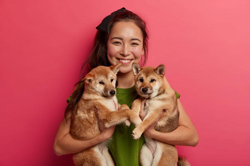 adoptar a otro perro